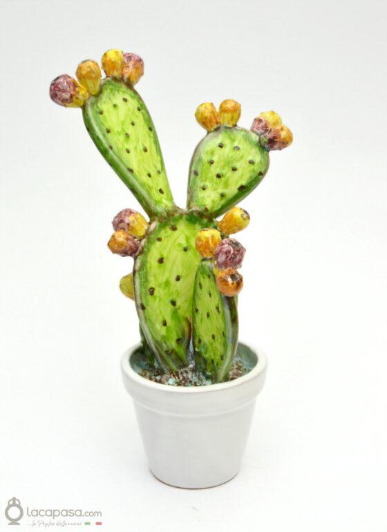 MUSCAREDDA - Cactus in ceramica