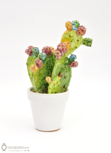 MUSCAREDDA - Cactus in ceramica